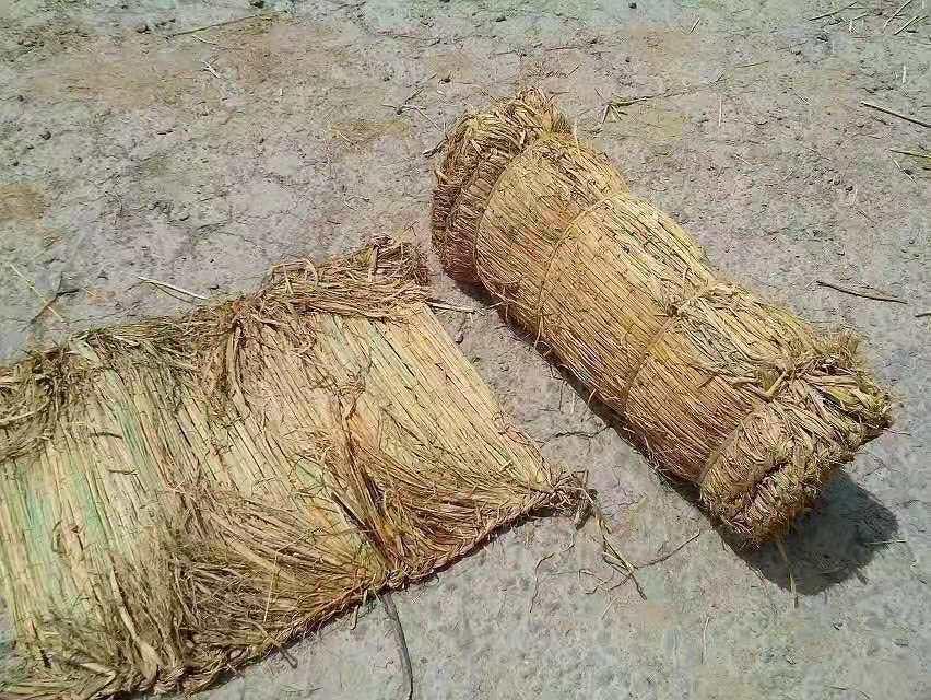 渭南草袋多少錢-銀川地區優惠的陜西草袋