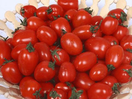 小番茄报价-口碑好的小番茄雅各蔬菜供应