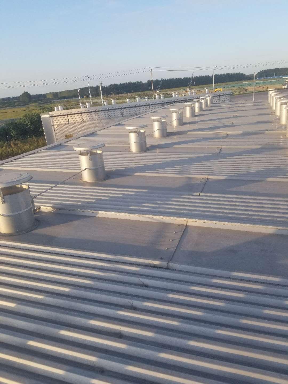 哈尔滨全铝合金木材干燥设备-就到哈尔滨中维木材