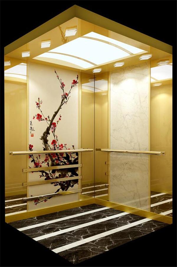 栾城电梯装饰公司|石家庄哪有卖口碑好的电梯装饰