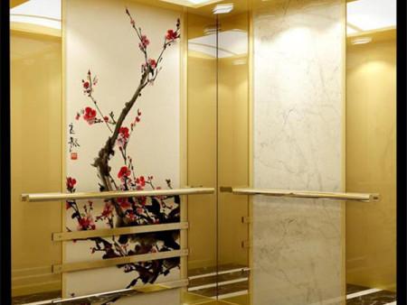 長治電梯裝潢-石家莊可靠的電梯裝潢