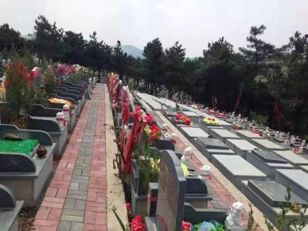 具有口碑的墓园规划服务介绍