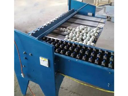 山东鸡蛋分选机_瑞昌机械提供销量好的鸡蛋分选机