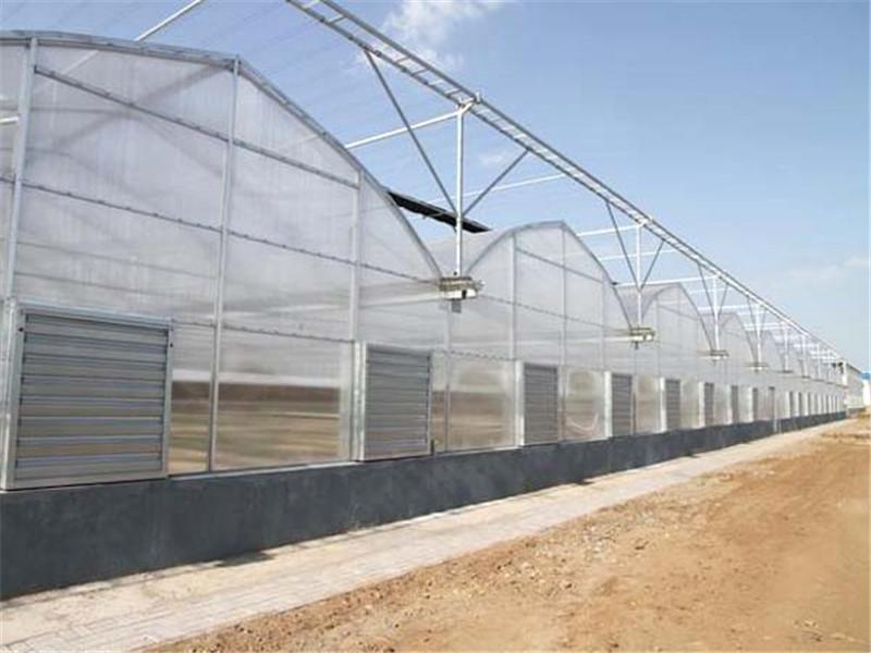 湖南連棟溫室-建連棟溫室要多少錢