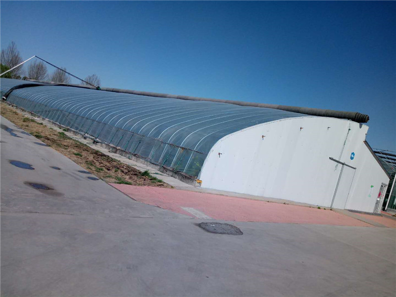 溫室工程承建_山東高質量的溫室工程建設