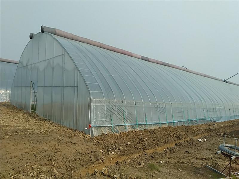 日光溫室建造-日光溫室公司推薦