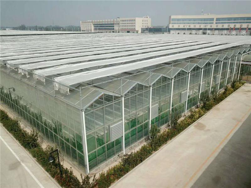 陽光板智能溫室