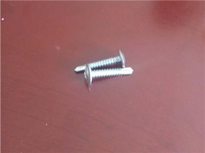 盤頭鉆尾絲-專業的盤頭鉆尾螺絲推薦