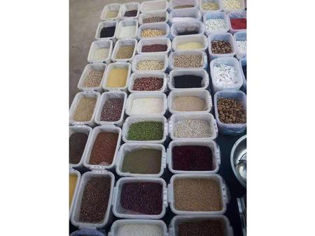 低温烘焙熟五谷杂粮磨粉原料-五谷养生粉原料厂