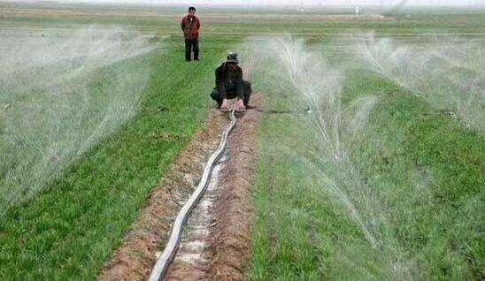 固原微喷带-固原微喷带生产-固原微喷带批发厂家-利盐节水