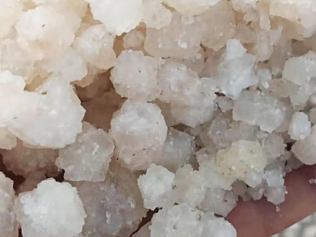 大颗粒日晒海盐厂家_优惠的大颗粒无机盐厂家直销