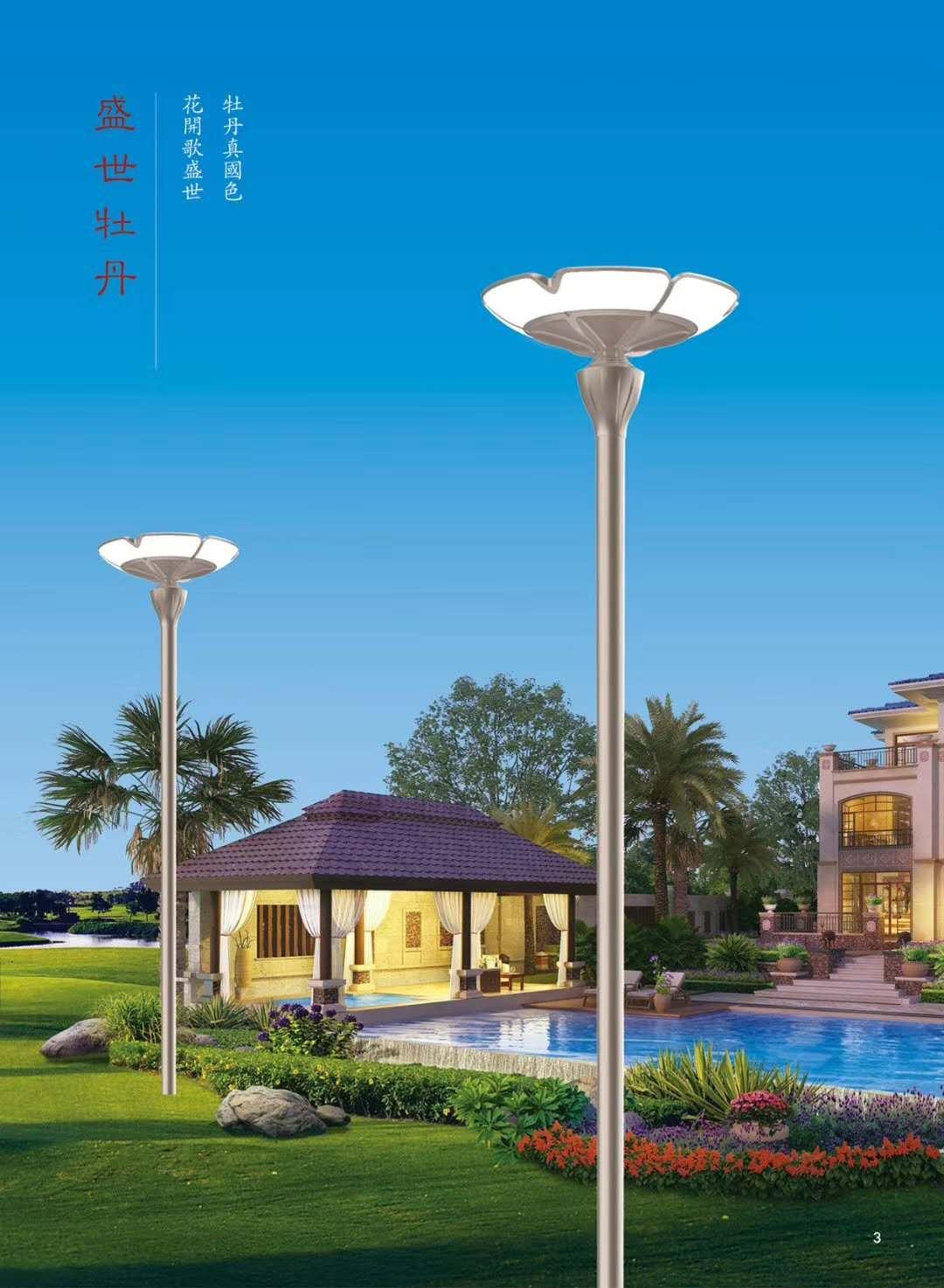 淄博庭院燈-想買新款庭院燈就來振華工程照明