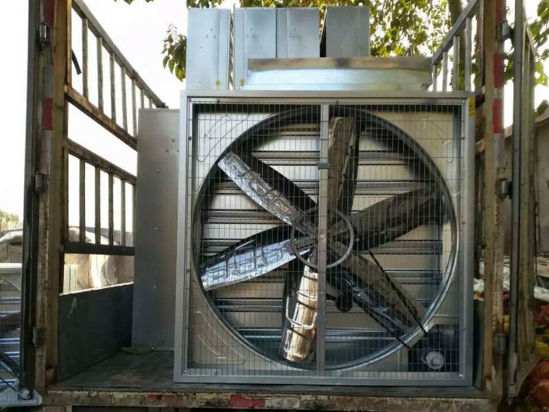 养猪厂用降温风机//养猪场用降温风机