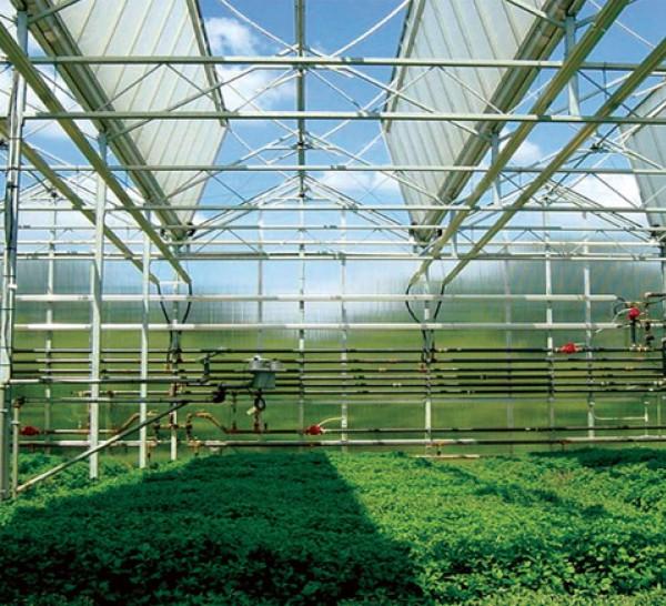 智能温室工程,智能温室施工,智能温室