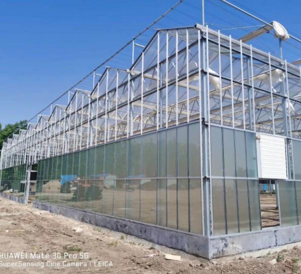 玻璃温室承接,玻璃温室报价,玻璃温室