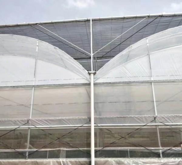 连栋薄膜温@ 室造价-四川薄膜温室-吉林薄膜温室