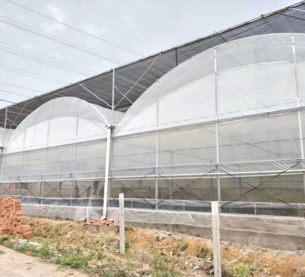 薄膜温室施工-哪里有提供口碑好的连栋温室