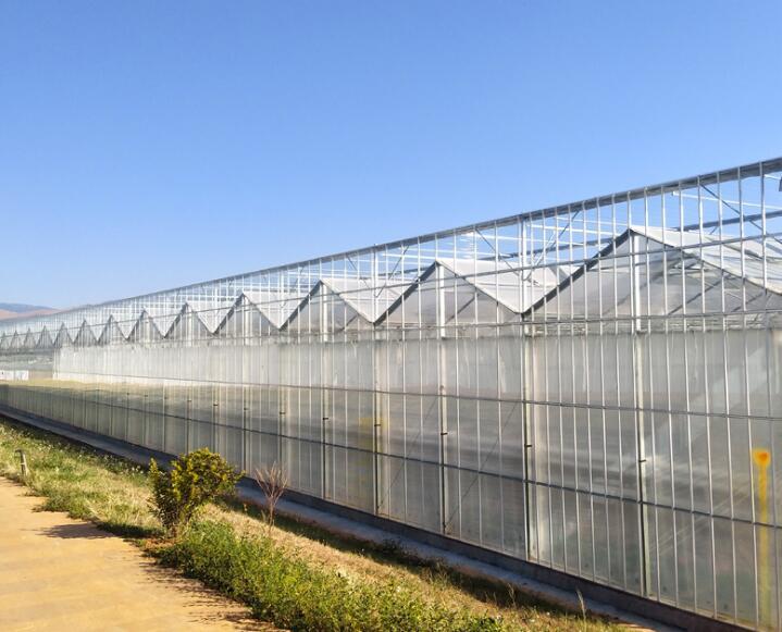 蔬菜大棚搭建厂家河南连栋大棚价格永发温室大棚