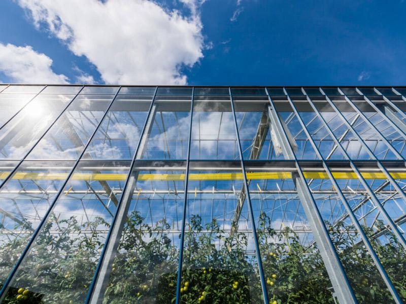 智能溫室-江蘇玻璃溫室工程-江蘇玻璃溫室市場價格