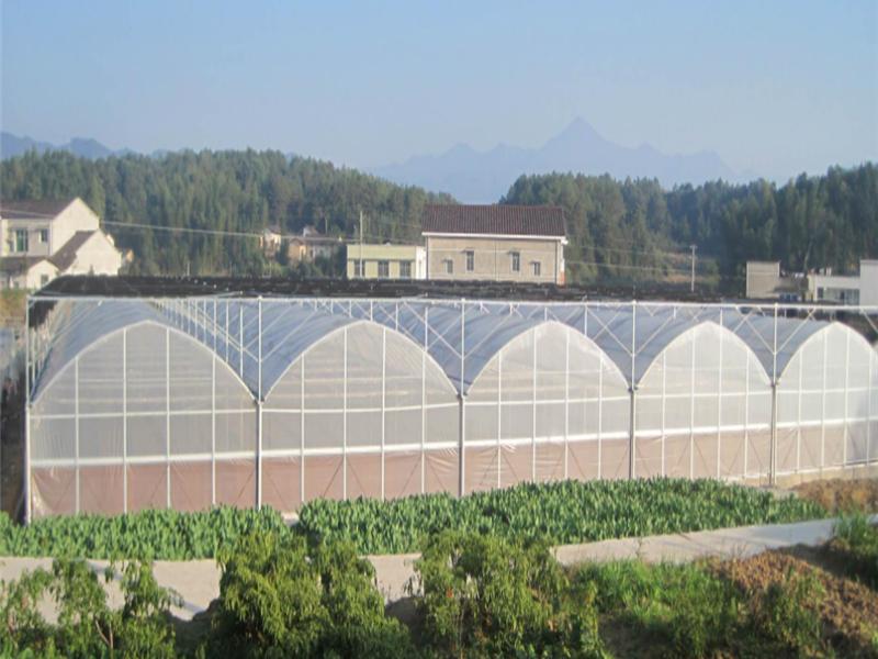 江蘇溫室大棚設計-哪里有提供靠譜的蔬菜大棚