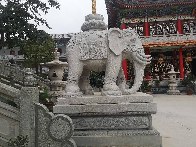 辽宁石雕大象制造商