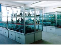 优质的西安实验室柜类-西安哪里可以买到划算的实验室柜类
