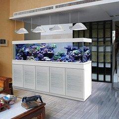 精美的鱼缸哪里买-饭店海鲜缸定做