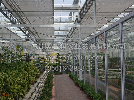 淄博智能温室_嘉润农业供应具有口碑的山东智能温室建设