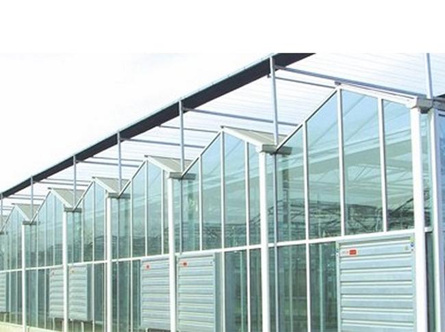 花卉温室大棚-智能温室大棚建造费用