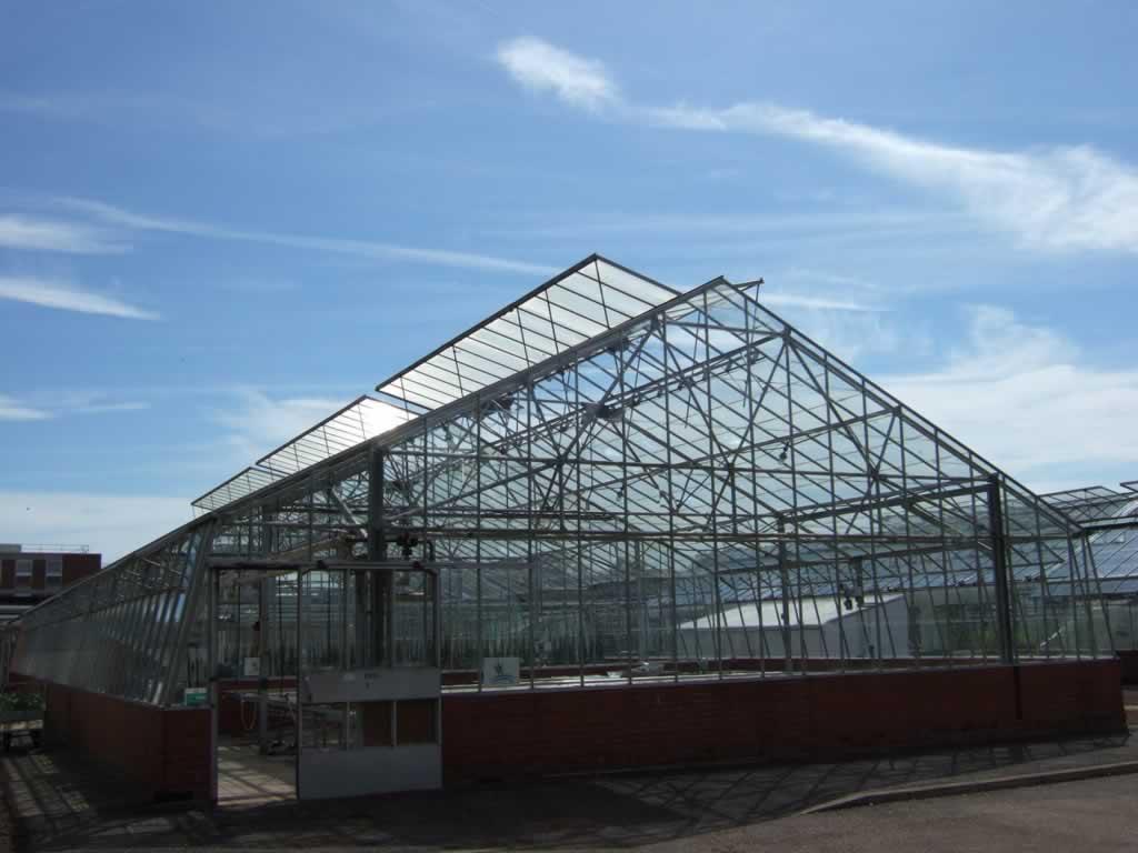陕西蔬菜大棚|潍坊哪里有提供玻璃温室大棚建造