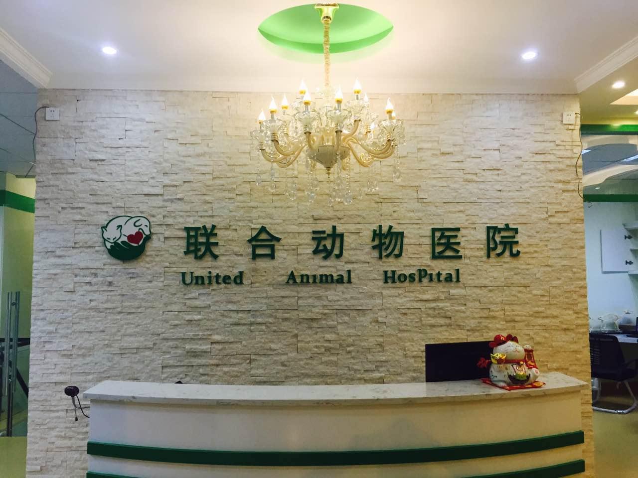 湖北可信赖的武汉联合动物医院——汉阳武汉联合动物医院