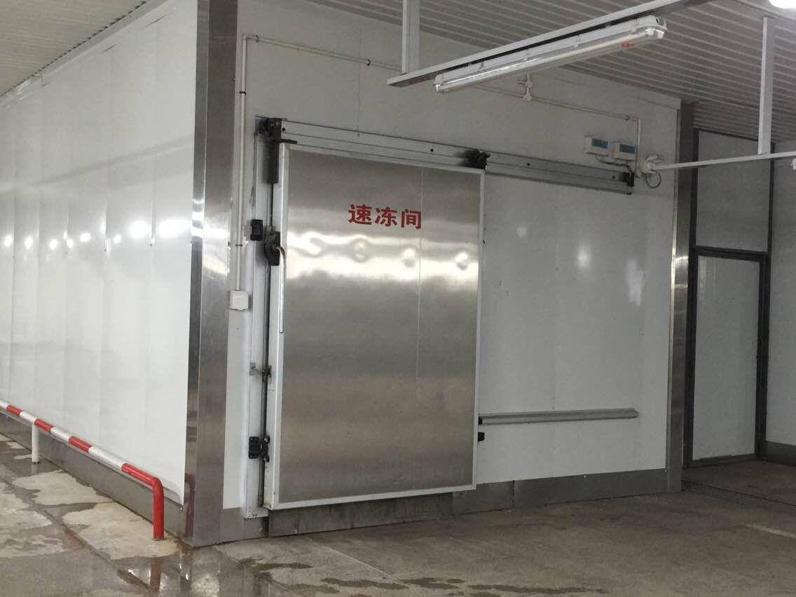 速冻机加工-性价比高的速冻机,亿龙机电倾力推荐