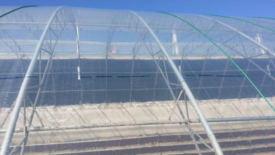 湖南长寿灌浆膜加盟-潍坊市具有口碑的灌浆膜提供商