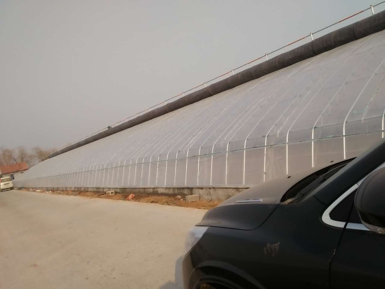 阳光板温室大棚造价-山东信誉好的蔬菜大棚建造公司