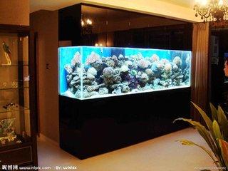 知名的苏州鱼缸定做厂家当属水之恋水族制品,观赏鱼缸定制
