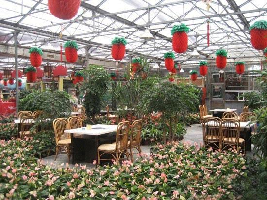 生态餐厅造价-山东哪家生态餐厅建设公司专业