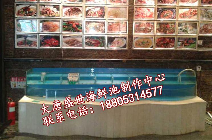 朔州海鲜池_哪里有卖出色的酒店海鲜池