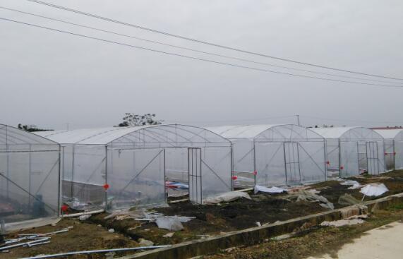 来宾大棚材料厂家-南宁大棚材料设备就选睿农温室大棚设备