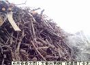 厂家批发工业木炭-为您?#33805;?#29289;超所值的工业木炭