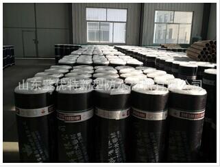 泰安屋面种植耐根穿刺防水卷材-好用的高分子金属耐根穿刺防水卷材当选璧优特防水
