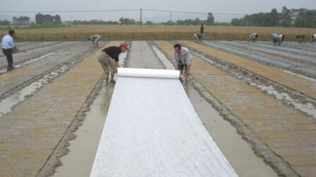 无纺布-潍坊地区具有口碑的 ,无纺布