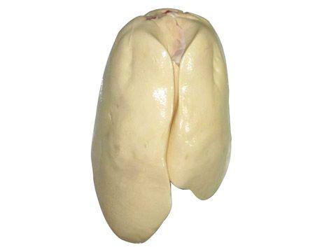 冷冻B级法度鹅肝-供给潍坊价钱鹅肥肝