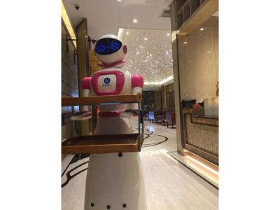 酒泉餐饮机器人招商加盟,买实惠的餐饮机器人,就选甘肃玉宇盛华机械