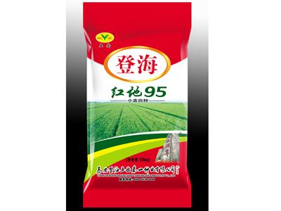 安徽小麦种子 专业供应优质小麦种子
