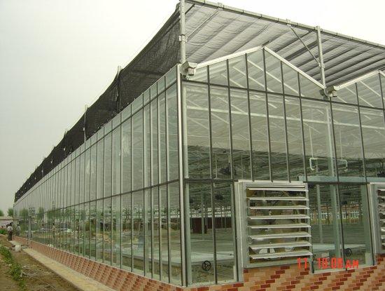 江西阳光板温室工程 哪里的阳光板温室效果好