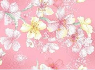 高质量的加密纯棉布直销供应 四川加密纯棉布