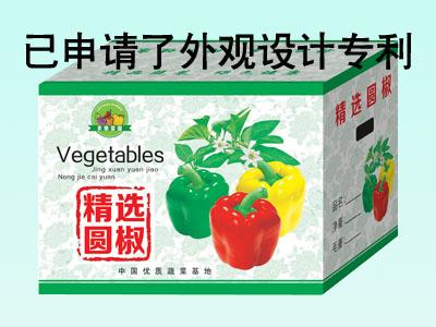 青州纸箱加工|山东蔬菜箱定制