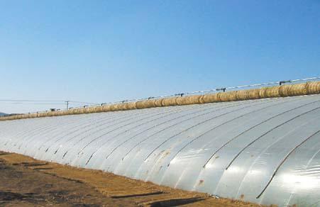 山东灌浆膜供应商-潍坊有品质的灌浆膜哪里有供应