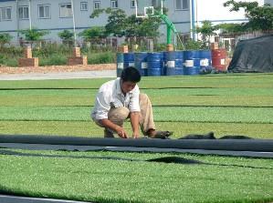 定西人造草坪 可信赖的人造草坪批发商