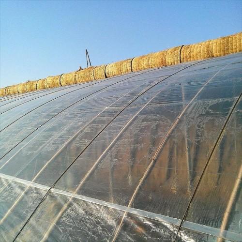 用着放心-!温室大棚耐老化塑料布||长寿无滴大棚膜生产厂家